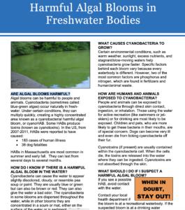 cover image for cyanobacteria brochure
